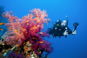 scuba divers are advocates of the ocean