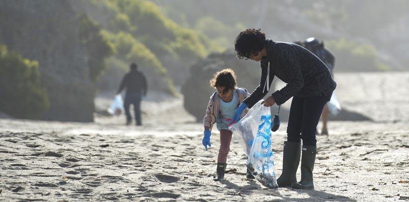 Help Take Care of the Beach
