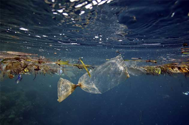 Rubbish in the ocean