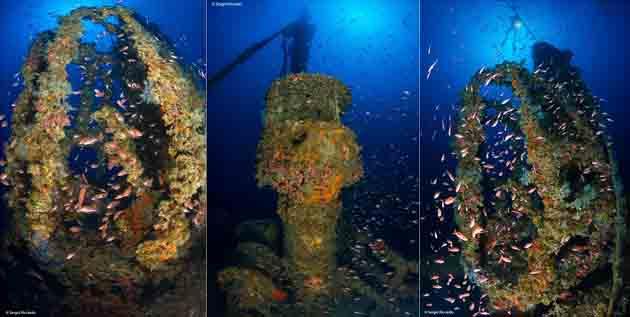 Kent Wreck dives