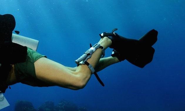 Dive Strap on leg