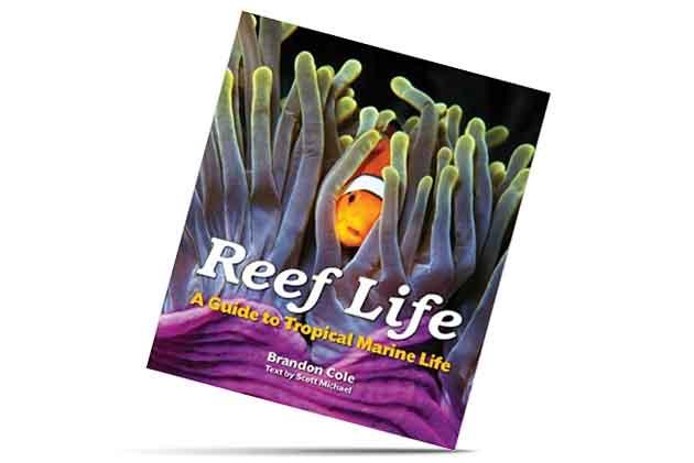 Reef Life scuba Diving Book