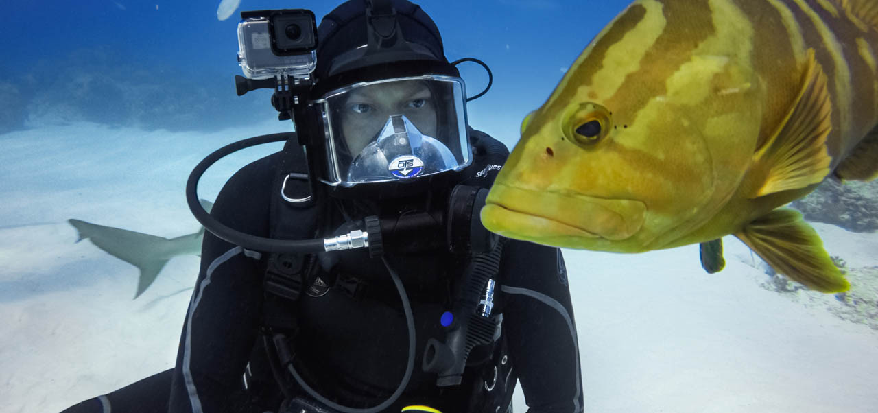 Top 10 Best GoPro Filters for Scuba Diving