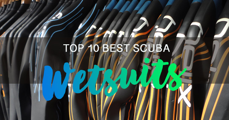 Top 10 Best Wetsuits for Scuba Diving