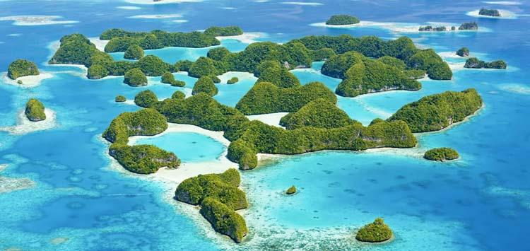 Scuba Diving Palau