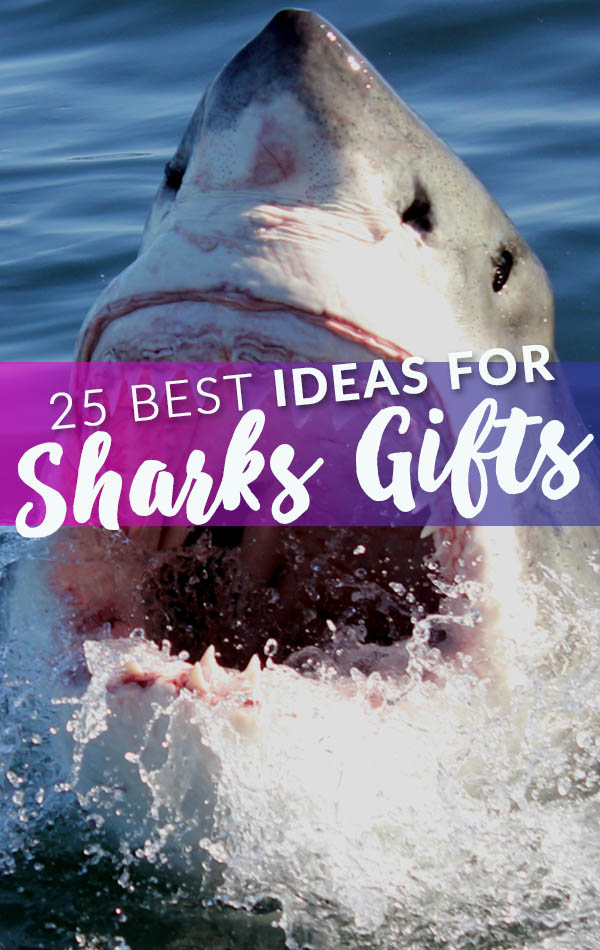 25 Best Shark Gifts Side Banner