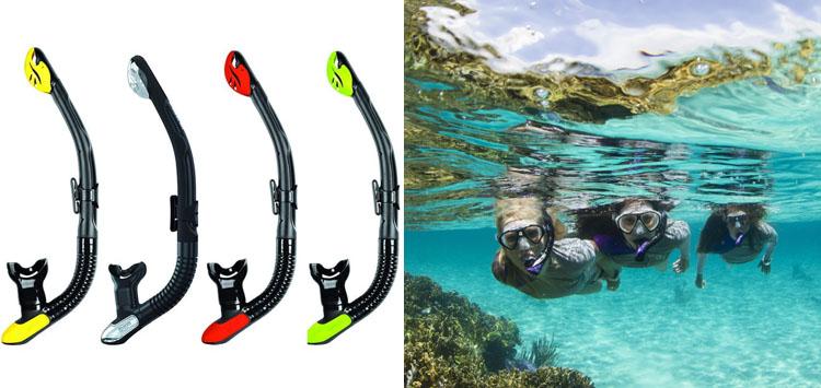 Mares Ergo Dry Snorkel