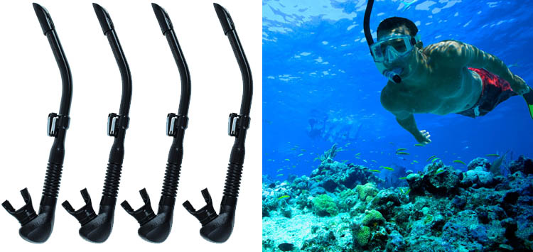 Riffe Stable Scuba Diving and Snorkeling Snorkel