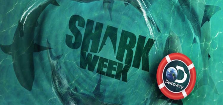 What is Shark Week all About