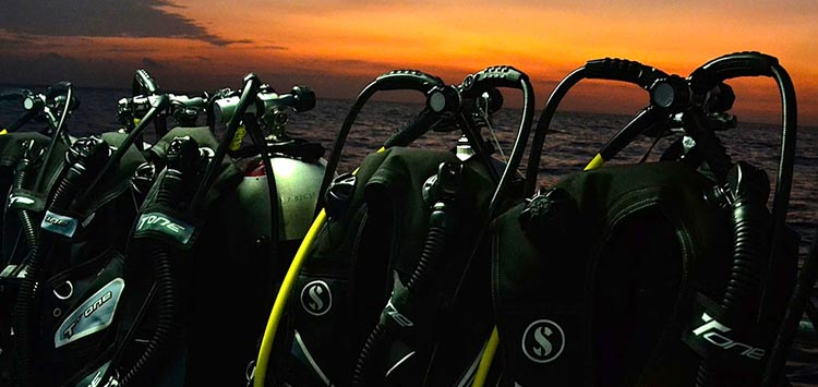 Beginners Guide to Night Diving