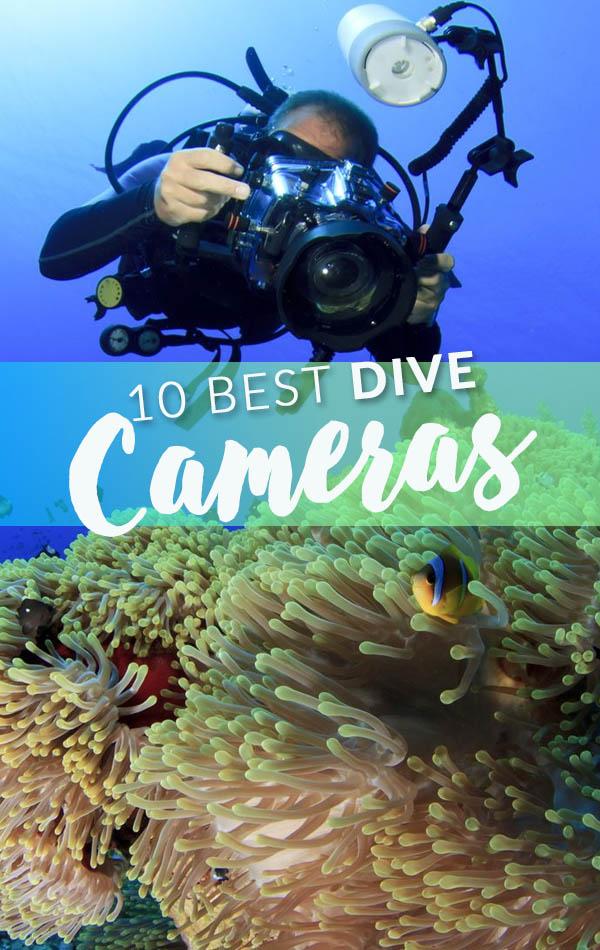 10 Best Dive Cameras Side Banner
