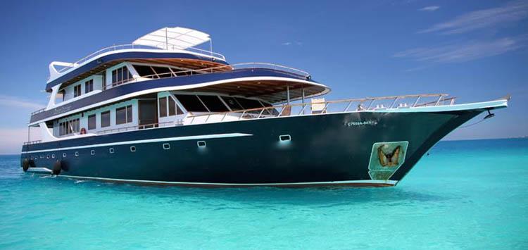 Ocean Divine, Maldives Liveaboard