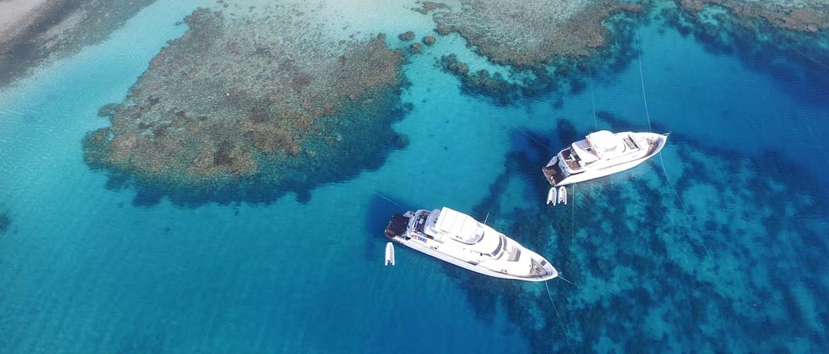 Liveabord Diving Has Access to the Most Remote Dive Spots