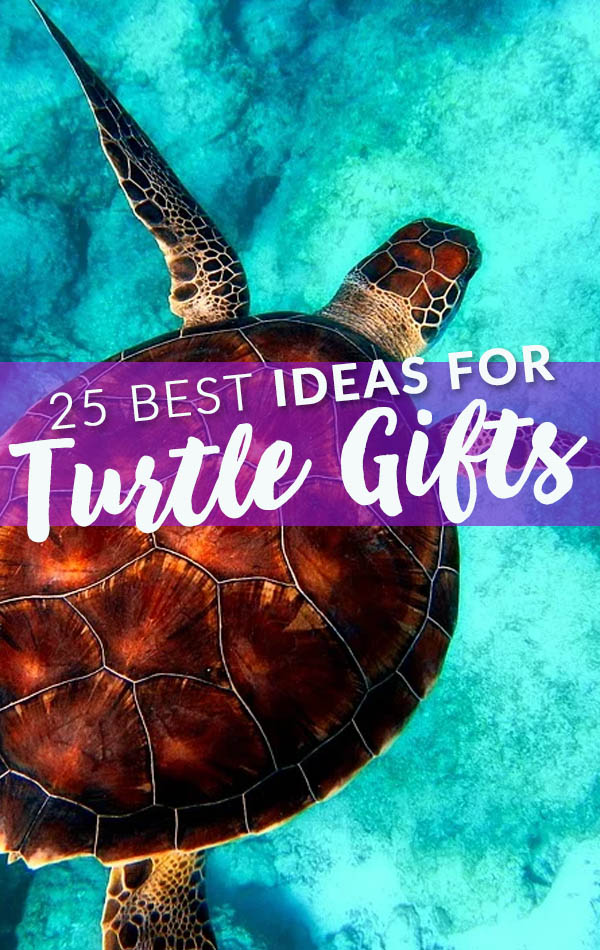 Best Turtle Gifts Side Bar Banner